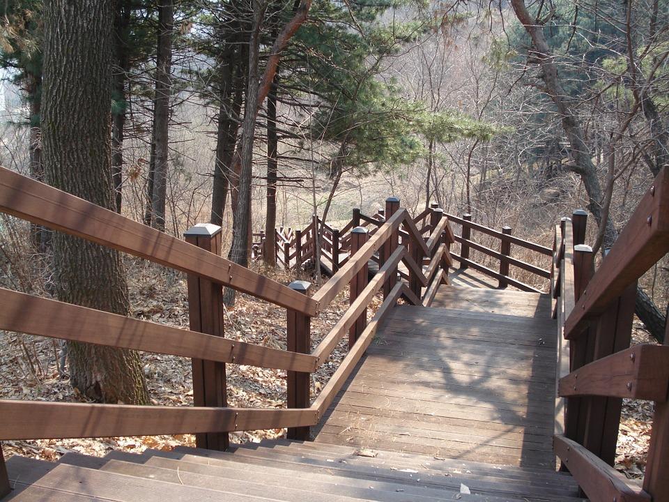 מדרגות מעץ לגינה